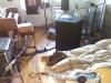 fanny-studio